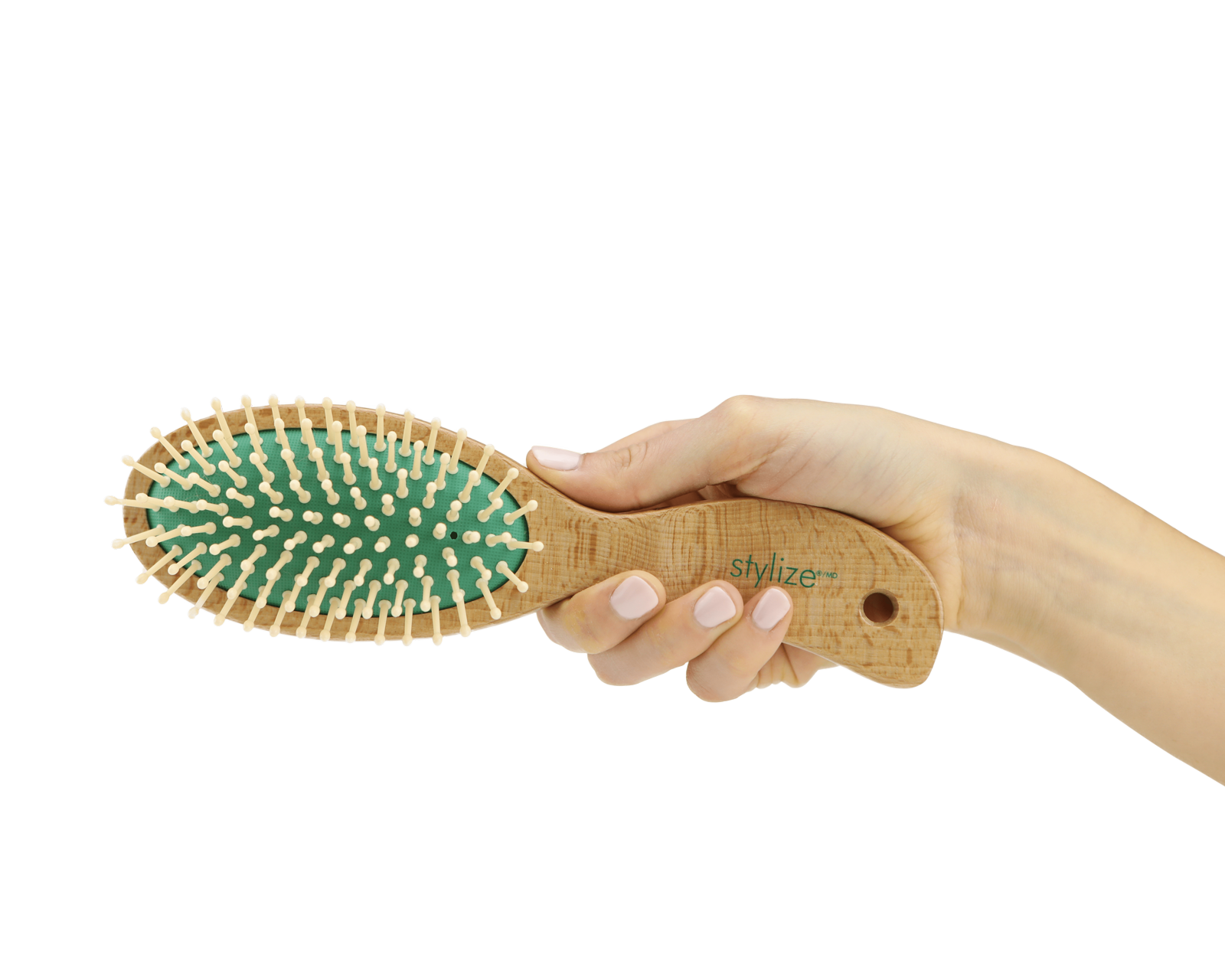 Hand model product photo on transparent background of hand holding a green hair brush